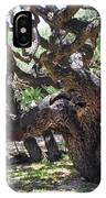 In The Depth Of Enchanting Forest Vi IPhone Case