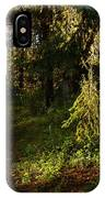 In The Druid Cathedral IPhone Case