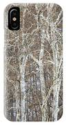 In The Sycamores IPhone Case