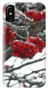 Incased Berries IPhone Case