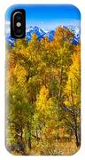 Independence Pass Autumn Colors IPhone Case