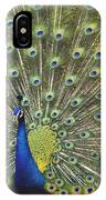 Indian Peafowl Male Displaying IPhone Case
