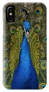 Indian Peafowl Male In Full Display IPhone Case