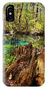 Indian Summer At Buford Spring IPhone Case