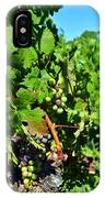Inglenook Vineyard -10 IPhone Case