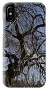 Inner Energy In Full Blossom 1 IPhone Case