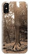 Interesting Tree IPhone Case