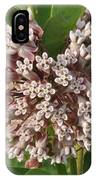 Into The Heart Of A Milkweed Flower IPhone Case