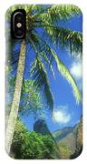 Io Valley Palm And Needle Maui Hawaii IPhone X Case
