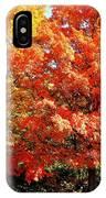 Is Autumn Already IPhone Case