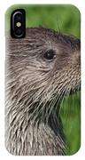Is It Dinner Time IPhone Case