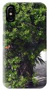 Island Tree IPhone Case