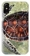 Island Turtle IPhone Case
