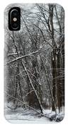 Its A Beautiful Winter IPhone Case