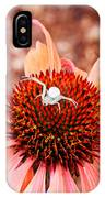 Itsy Bitsy Spider Walking On The Flower IPhone Case