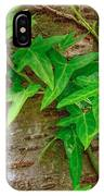 Ivy Wrapped Tree Trunk IPhone Case