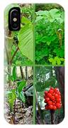 Jack-in-the-pulpit Wildflower    Arisaema Triphyllum IPhone Case