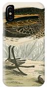 Jack Snipe IPhone Case