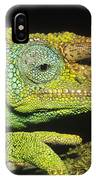 Jacksons Chameleon Male East Africa IPhone Case