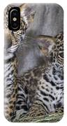 Jaguar Cubs IPhone Case