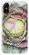 January King Cabbage  IPhone Case