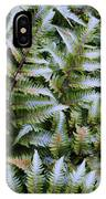 Japanese Ferns IPhone Case