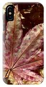 Japanese Maple Tree Leaves IPhone Case