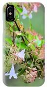 Japonica In Autumn IPhone Case