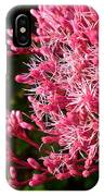 Joe Pye Weed IPhone Case