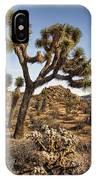 Joshua Tree 16 IPhone Case