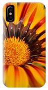 Jubilant Daisy IPhone Case