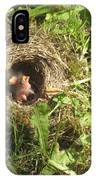 Junco Nest In The Lawn IPhone Case
