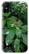 jungle in La Amistad National Park Panama 4 IPhone Case
