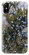 Juniper Berries - Merry Christmas IPhone Case