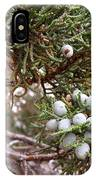 Juniper Berries Ripe IPhone Case