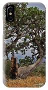 Juniper Tree On The Edge Of The Verde Valley IPhone Case
