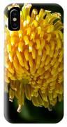 Just Dandy IPhone Case