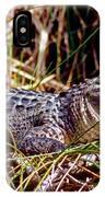 Juvenile American Alligator IPhone Case