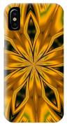 Kaleidoscope 14 IPhone Case