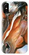 Horse Painting Keeping Watch IPhone Case