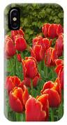 Keukenhof Gardens 28 IPhone Case