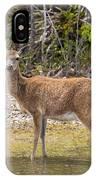 Key Deer Portrait IPhone Case