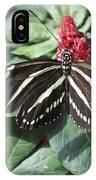 Key West Butterfly Conservatory - Zebra Heliconian IPhone Case