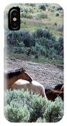 Kiger Mustangs At Mineral And Water Source IPhone Case