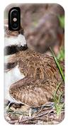 Killdeer And Young IPhone Case