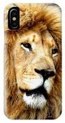 King Ludwig Xviiii IPhone Case