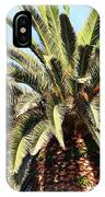 King Palm IPhone Case