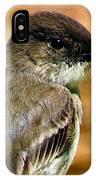 Kingbird Chillin IPhone Case