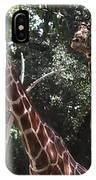 Knockin' Around The Zoo IPhone Case