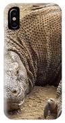 Komodo Dragon Male Basking Komodo Island IPhone Case